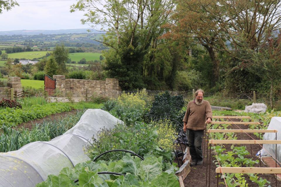 Nick on his organic farm in Carlow