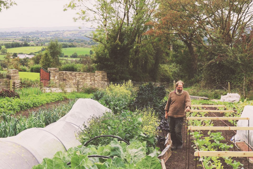 Nicks organic farm in Carlow
